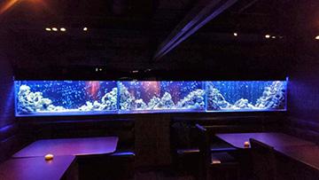 3メートルの大型海水風淡水魚水槽…?
