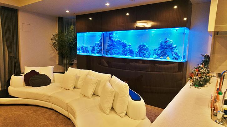 東京都の個人宅に大型海水魚水槽