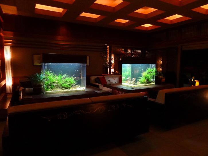 高級旅館と水槽