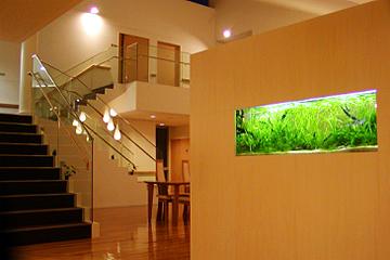 千葉県の老人ホームに水草水槽を設置!