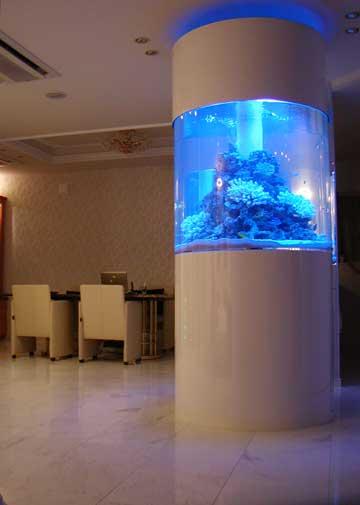 円柱水槽 リース 横浜