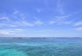 人工海水と天然海水どちらがいいのか?
